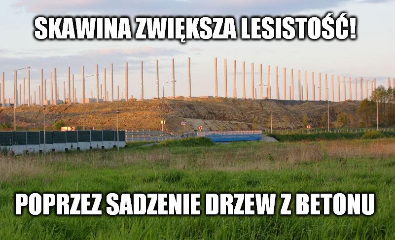 _Lesistosc_Skawina